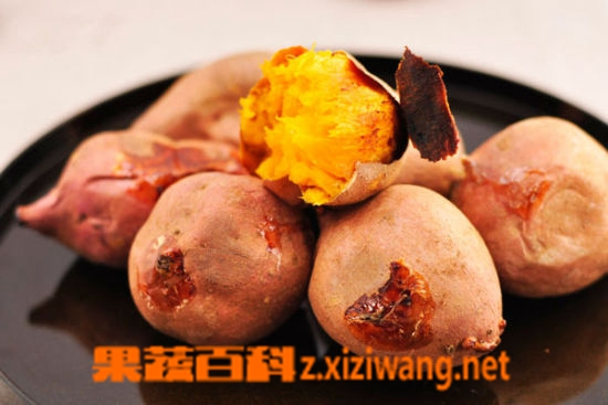 果蔬百科吃红薯会发胖吗 吃红薯的好处